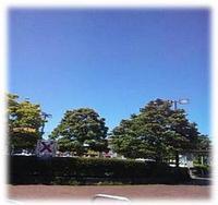 sashikomi13.JPG