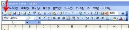 Excel2003.jpg