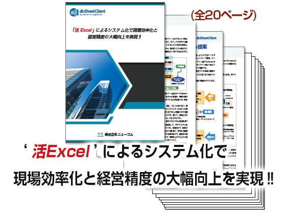 exlsys.jpg